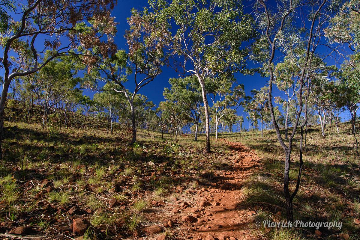 Bell gorge dans les Kimberley sur le Gibb river road