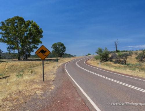 Notre arrivée en Australie : du rêve à la réalité