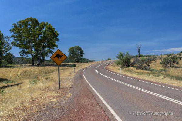 Arrivée en Australie - Préparation du road trip
