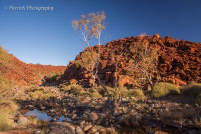 Péninsule de Burrup: témoin de la conscience écologique aléatoire des australiens