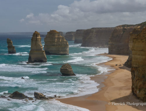 Les secrets de la Great Ocean Road de Geelong jusqu'à Cape Bridgewater