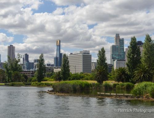 Un tour du circuit de formule 1 dans l'Albert park à Melbourne