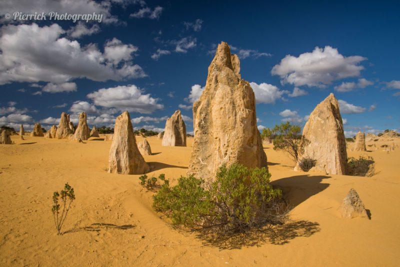 Pinnacles dans le parc national de Nambung en Western Australia