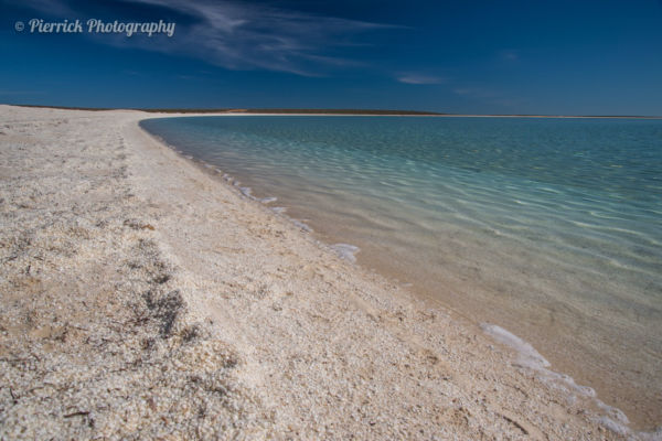 Shell beach sur le péninsule de Shark bay