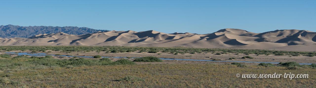 Les dunes de sable de Khongoryn Els en Mongolie