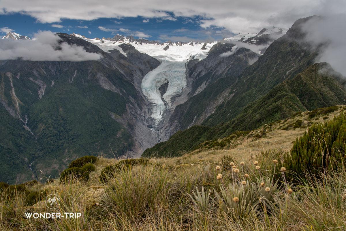 Randonnée Alex Knob au glacier Franz Josef