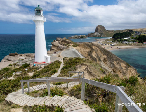 Castlepoint : son phare et son spectaculaire littoral