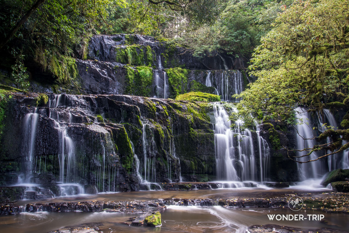 Coastal rainforest Park - Purakaunui falls