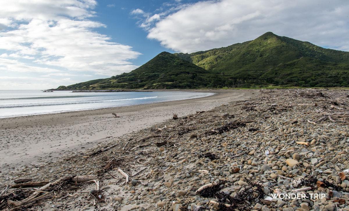 Pacific Coast Highway - Cape runaway - Whangaparaoa beach - East cape