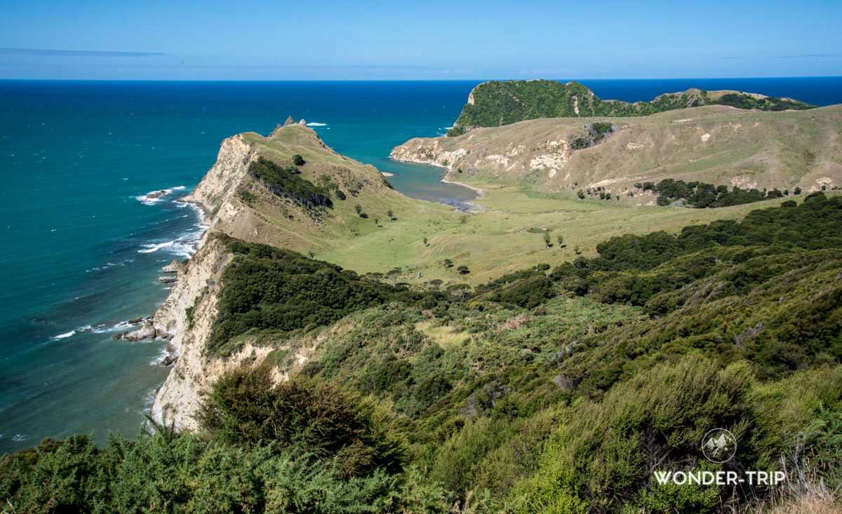 Pacific Coast Highway - Tolaga bay