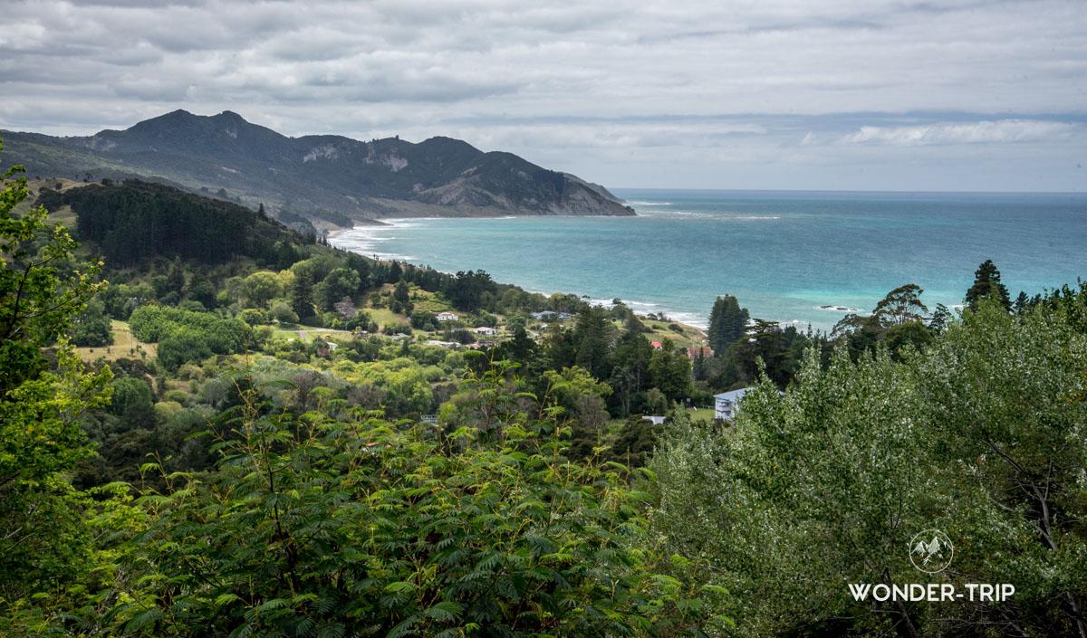 Pacific Coast Highway - Waipiro bay