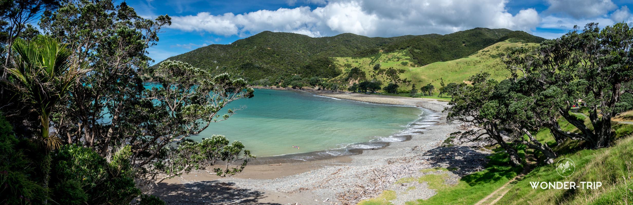 Stoney bay dans le far north Coromandel