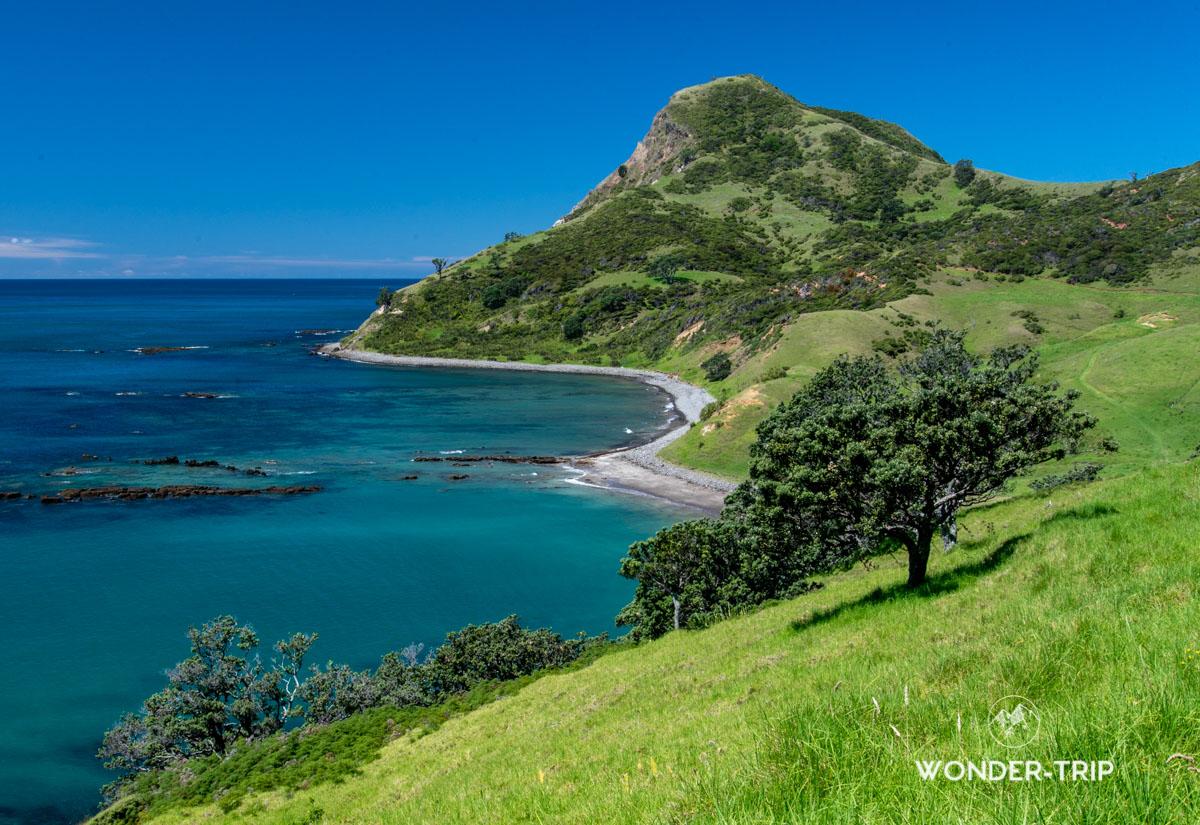 Far north Coromandel - Fletcher bay