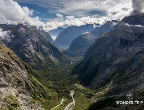 Randonnée Gertrude Saddle : un panorama vertigineux sur les fiords du parc national Fiordland
