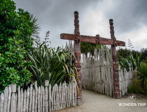 Hamilton Gardens: immersion dans l'histoire des jardins du monde