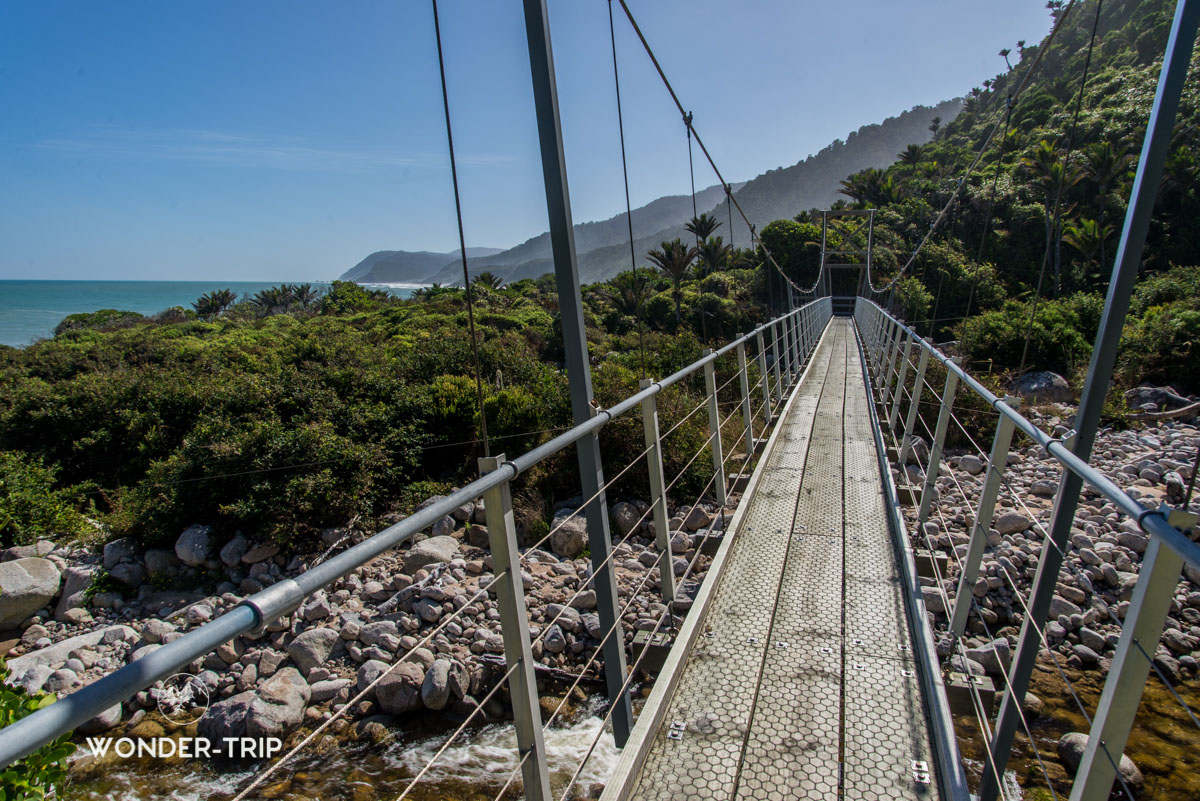 Pont suspendu sur la randonnée de Heaphy - Great walk