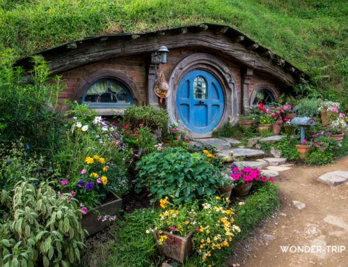 Hobbiton – Le village hobbit en Nouvelle-Zélande : info & avis