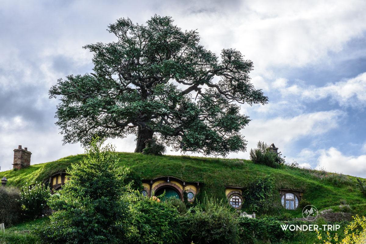 Hobbiton - Village des hobbits en Nouvelle-Zélande