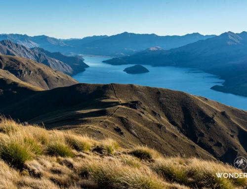 Randonnée Isthmus peak : Version moins touristique du Roys peak à Wanaka