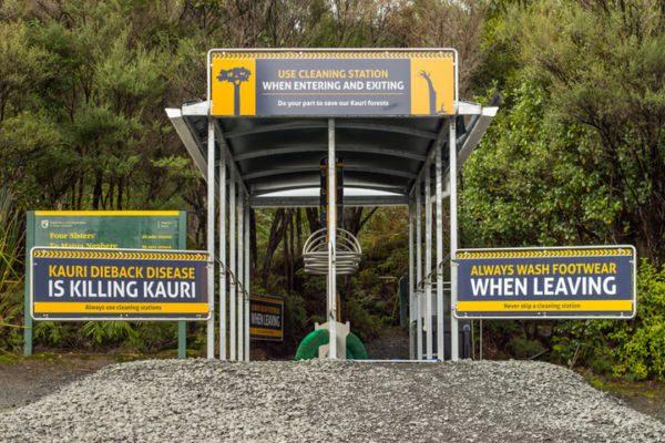 Station de lavage pour la maladie du Kauri dieback