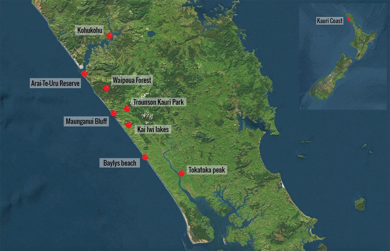 Carte des lieux d'interet de la Kauri Coast en Nouvelle-Zelande