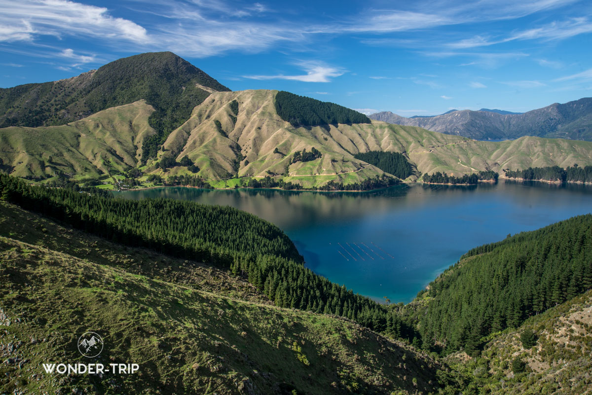 Marlborough Sounds - French pass