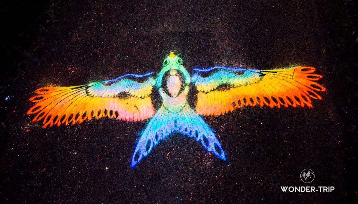 New plymouth quoi faire - Festival des lumières