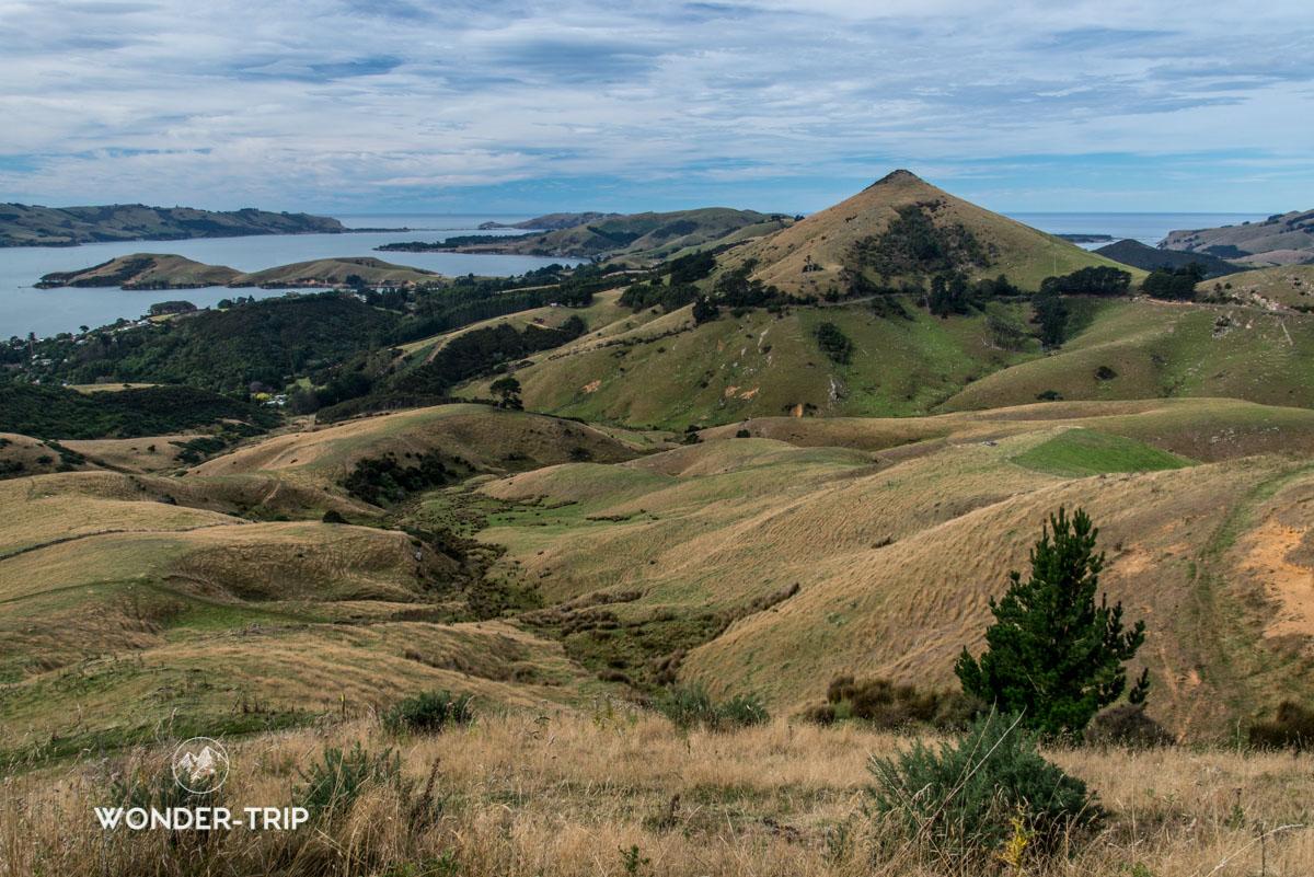 Peninsule Otago