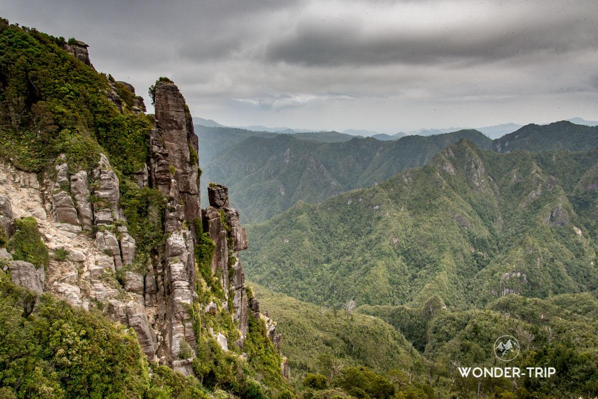 Coromandel - The pinnacles