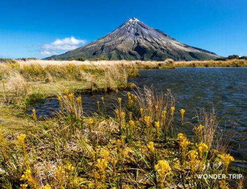 Pouakai Circuit : trek autour du mont Taranaki dans le parc national Egmont