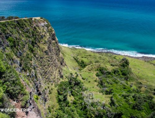Raglan : Itinéraire d'un road-trip sur la côte ouest du Waikato