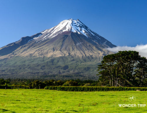Mont Taranaki : ascension vertigineuse du volcan dans le parc national Egmont