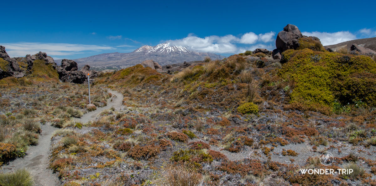 Tongariro Northern circuit