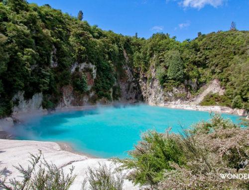Waimangu volcanic valley: plus jeune complexe géothermal du monde