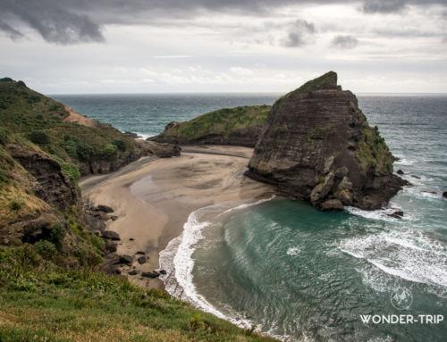 Waitakere Ranges – Guide des randonnées et plages de la côte ouest d'Auckland
