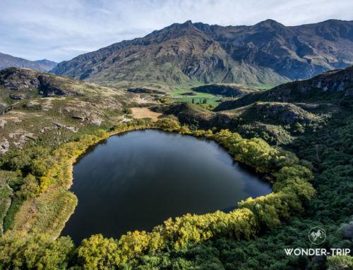 Lac Wanaka, Haast pass et parc national du mont Aspiring: Guide des randonnées