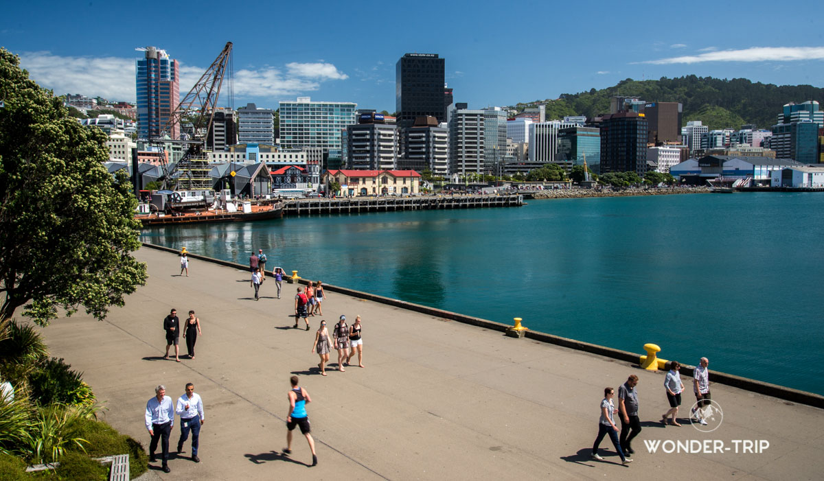 Port de Wellington