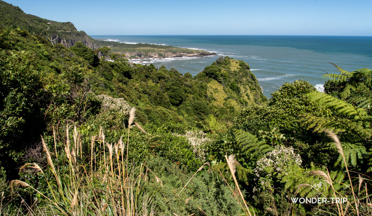 West coast - Irimahuwhero viewpoint
