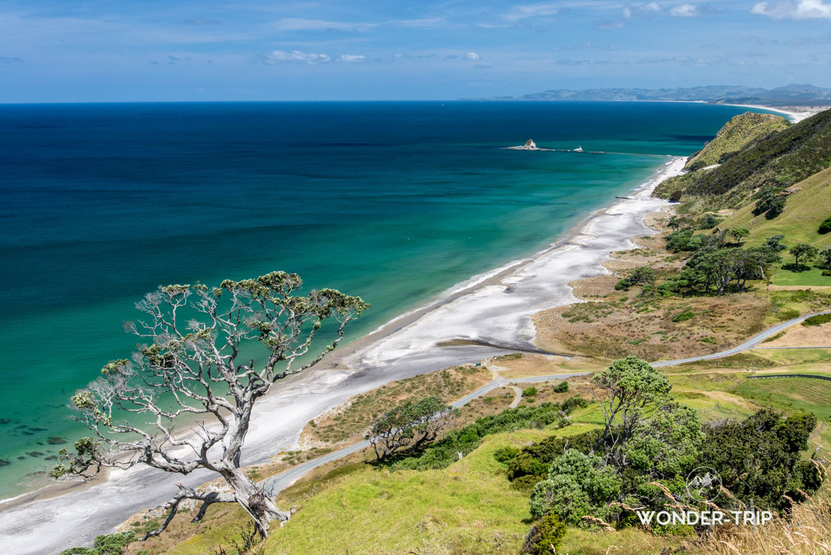 Randonnée sur la côte de Mangawhai heads